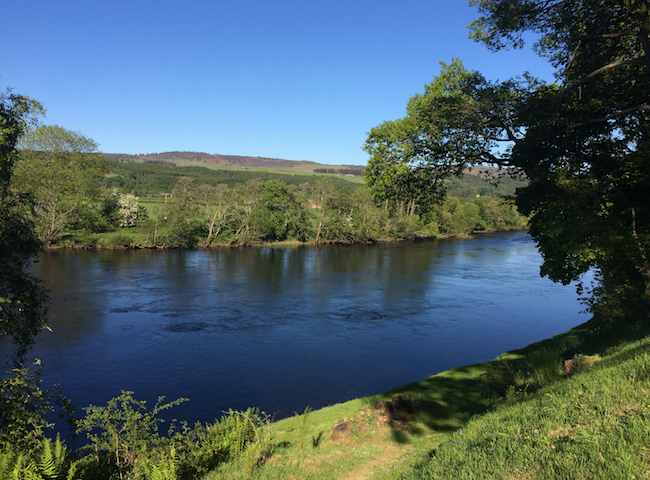 Booking River Tay Salmon Fishing Guides