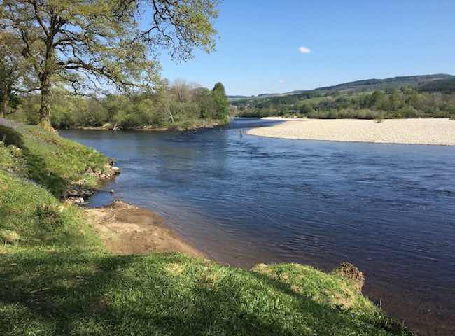 River Tay Salmon Fly Fishing
