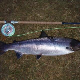 Salmon Fishing Scotland (129).JPG