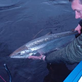Salmon Fishing Scotland (196).JPG