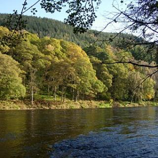 Salmon Fishing Scotland (204).JPG