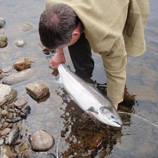 Salmon Fishing Scotland (90).JPG