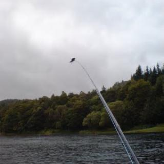 Salmon Fishing Scotland (92).jpg